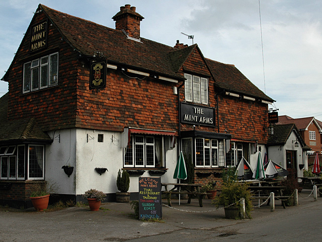 The Mint Arms