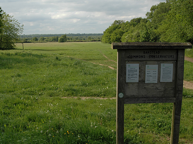 Banstead Heath