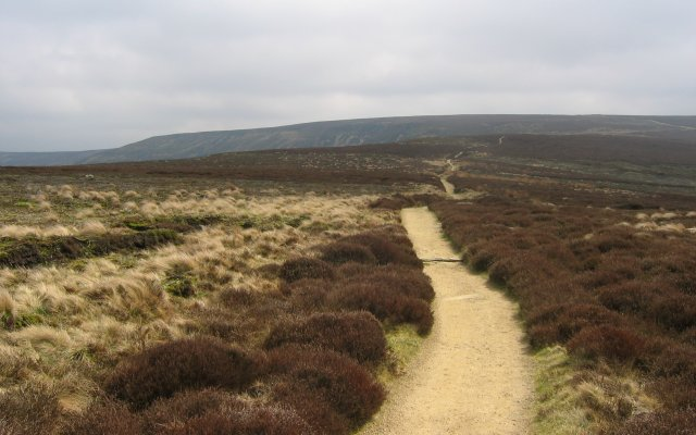 Cleveland Way on Urra Moor.