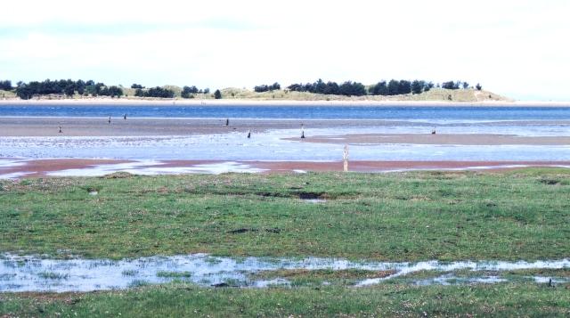Lagoon and Saltmarsh
