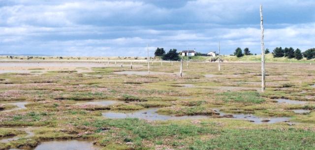 Duck Island