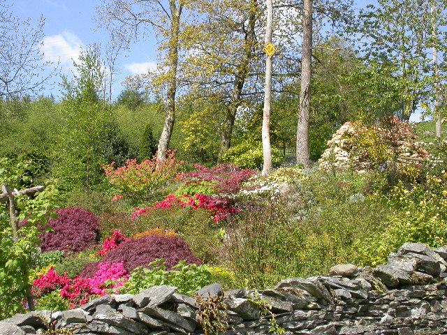 Garden near Knipe Fold