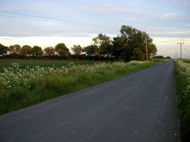 The tree-lined entrance to farm cottages