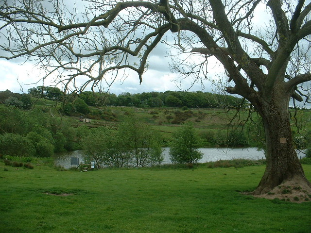 Fishing Lake, near Nether Kellet