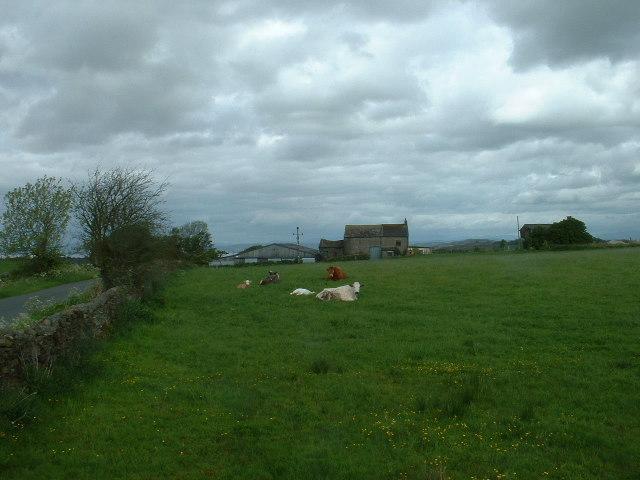 Green Hill House Farm, near Halton