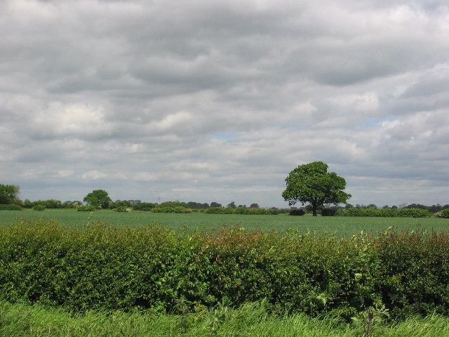 Farm land east of just Shipton