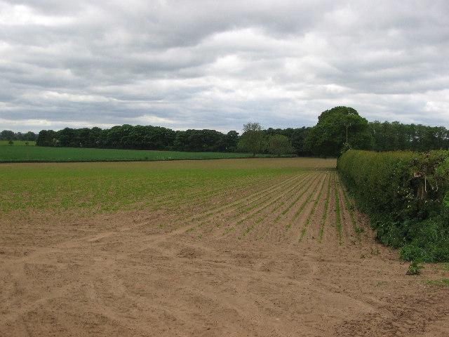Farm land near Myton Field