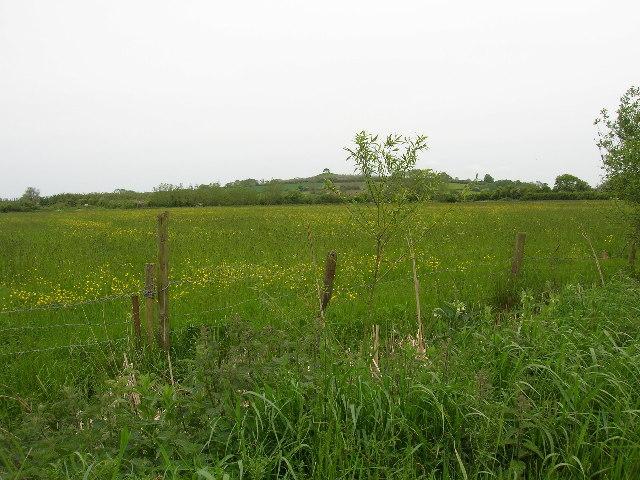 West Moor