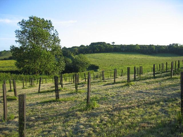 Copdock Hill
