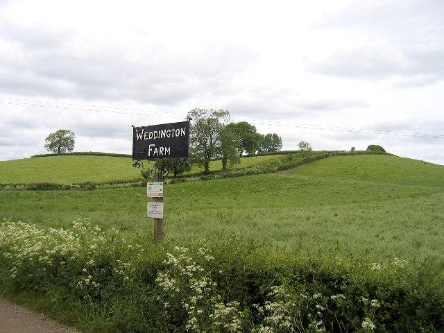 Weddington Hill