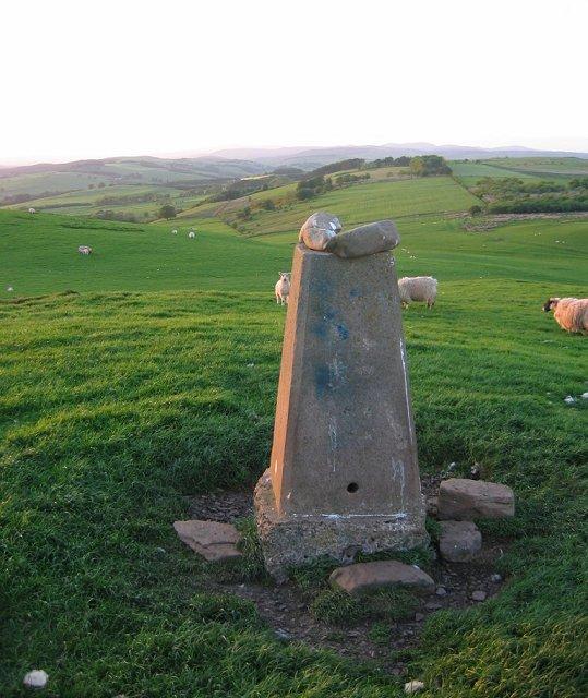 Quhytewoolen Hill