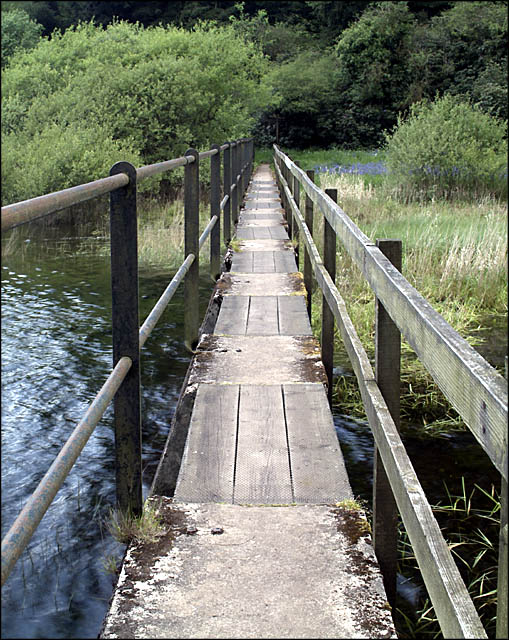 Footbridge across Trenchford