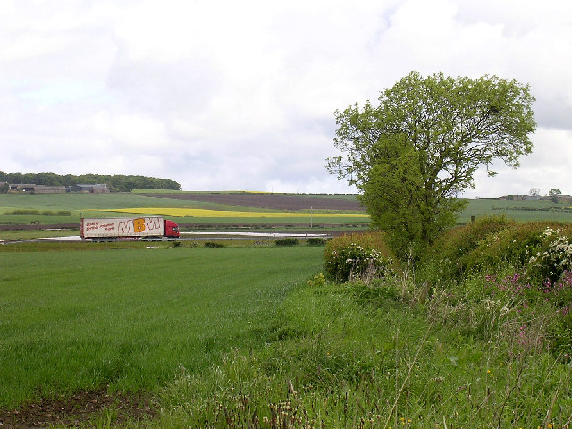 A92 near Nether Kelly