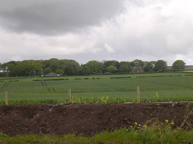 East Balmirmer from the A92