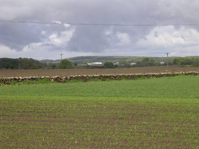 Farmland near Craigmill