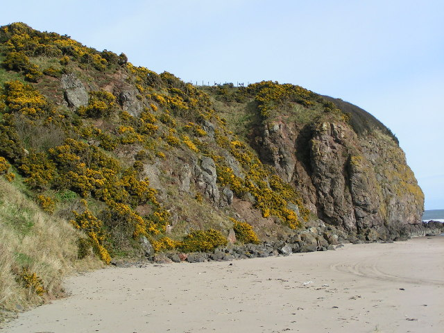 Cliffs at North end of Lunan Bay