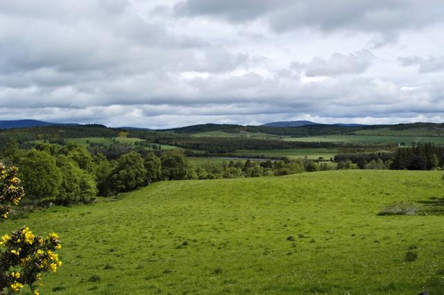 Dee Valley from Tillycairn Farm