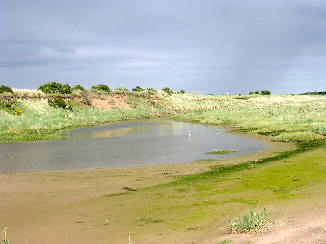 The mouth of the Buddon Burn
