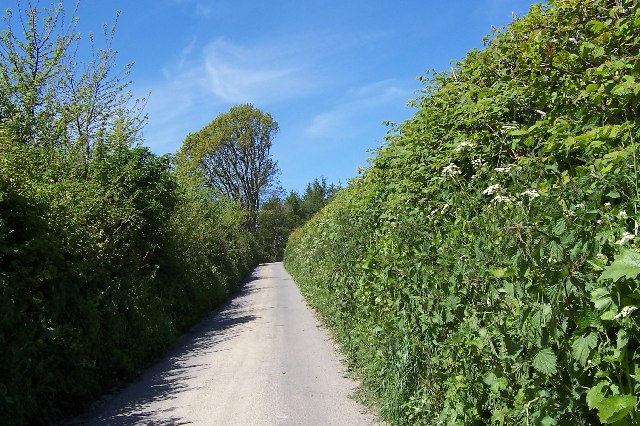 The road to Middlehope