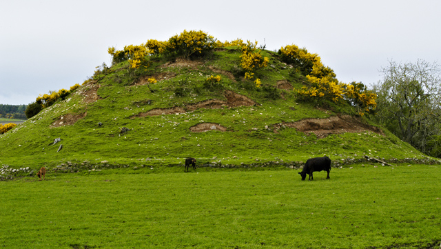 Motte at Cantraybruich