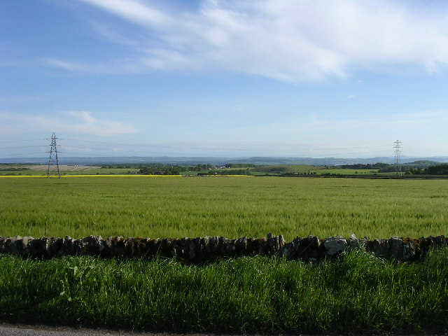 Barley fields south of Husbandtown