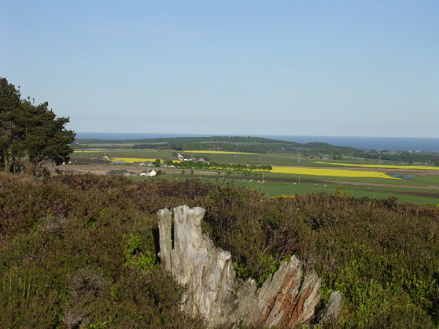 Distant North Sea from the top of Carrot Hill