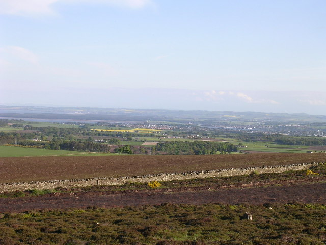 Dundee from the summit of Carrot Hill