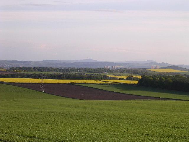 Farmland south of Dodd farm