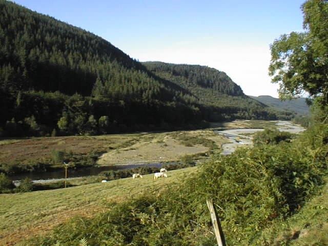 Floodplain of the River Ystwyth near Llanafan