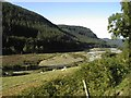 SN7071 : Floodplain of the River Ystwyth near Llanafan by Angella Streluk