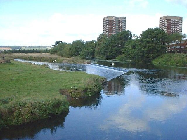River Tame near Ladybridge, Tamworth
