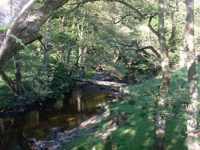 Marshaw Wyre in Hore Wood