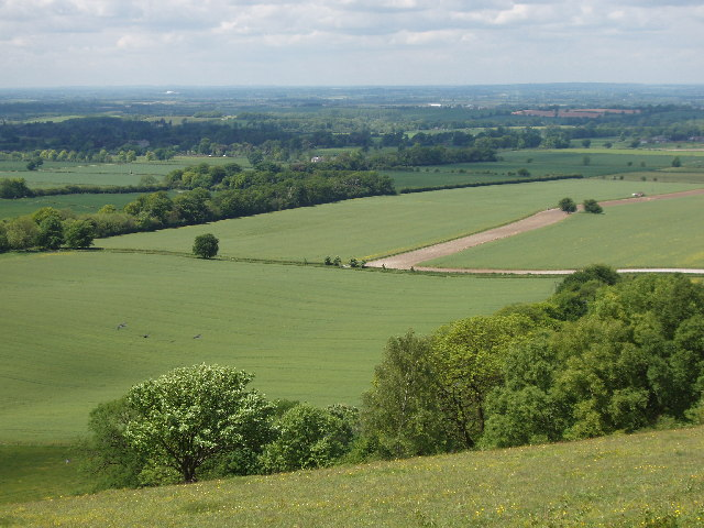 Icknield Way near Shirburn from the Chilterns scarp