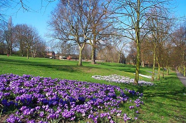 Chaucer Old Park, Ilkeston