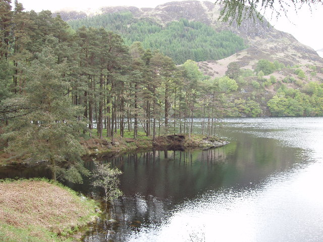 Wooded promontory by Loch Trool