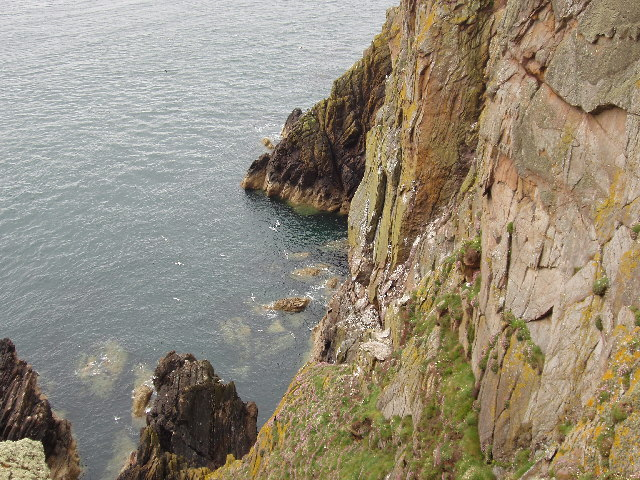Cliffs by Gallie Craig and Carrick-Kee, Mull of Galloway