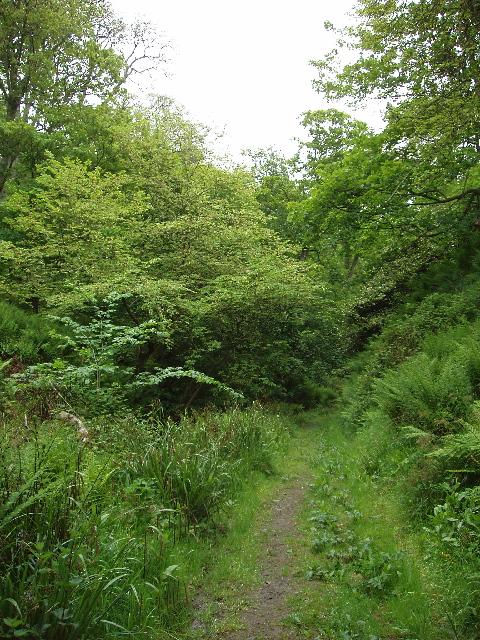 Dunskey Glen, near Portpatrick