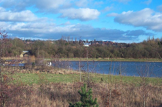 Straw's Bridge Nature Reserve, Ilkeston