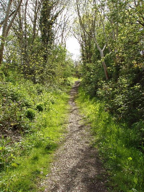 Threave Estate Walk on former Kirkcudbright Railway