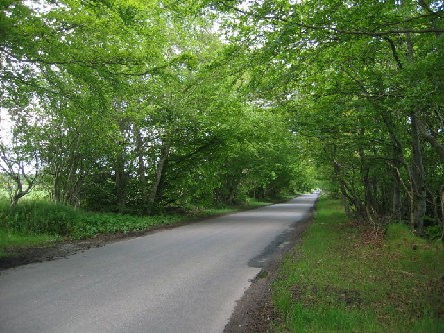 Countesswells Road