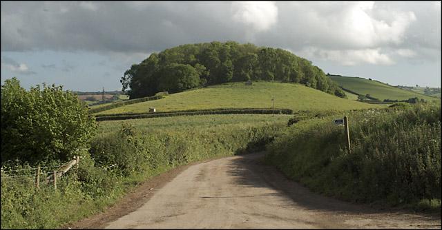 Tor Hill Plantation