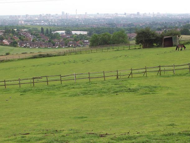 View towards Pheasey