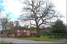 SK5141 : Broad Oak, Strelley by Garth Newton