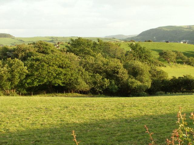 Fields near Henllys