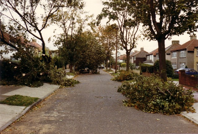 Wyncham Avenue October 1987