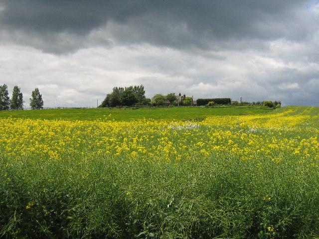 Blacon Farm