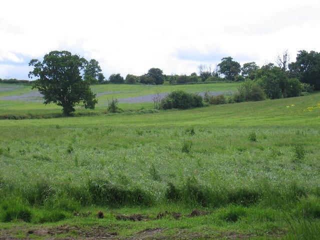 Wolverton Grange Farm