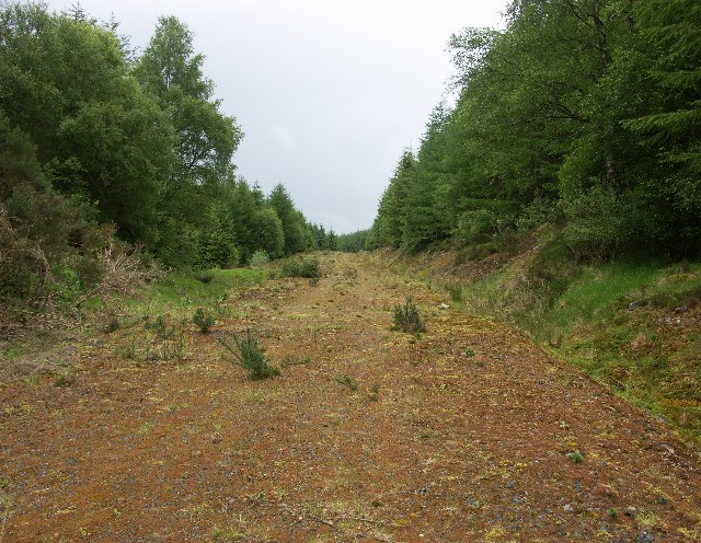 Forest track near Kilmonivaig