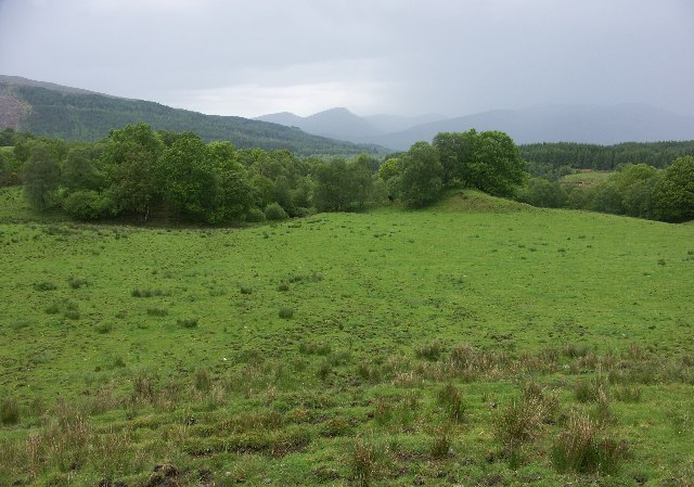 Woodland near Brackletter