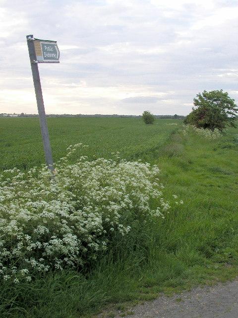 Bridleway to Sproatley